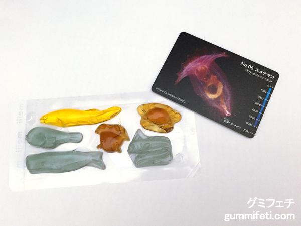 生物図鑑深海生物_002