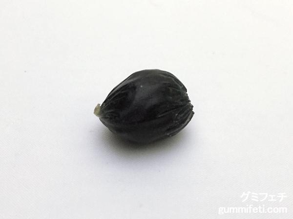 グミフェチコロロブルーベリー_002